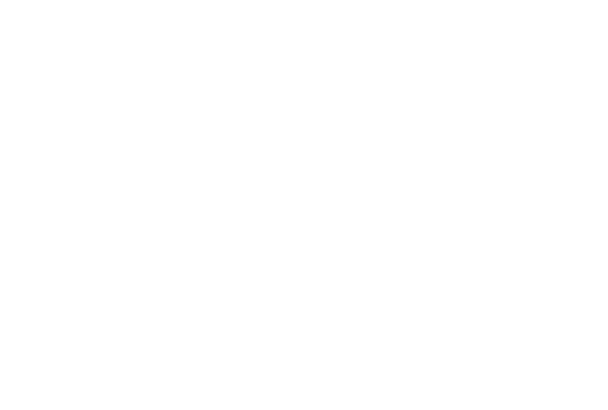 Best new car of the year